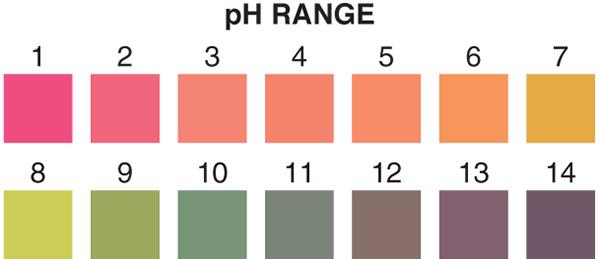 Ph Strips Chart Keninamas