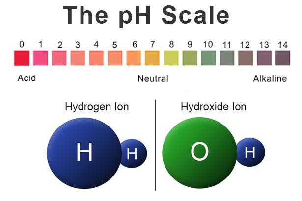 acid base ph lab