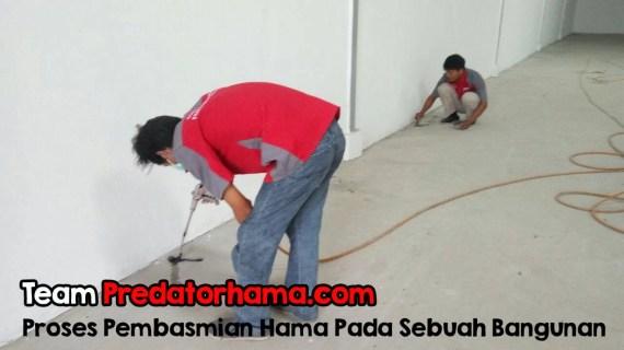 Jasa Basmi Rayap Bergaransi Call : 0813-1022-2548