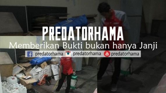 Jasa Anti Rayap Alami Bogor I Hub: 0813-1022-2548
