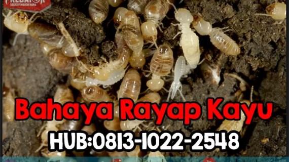 Anti Rayap Bogor Hub: 0813-1022-2548