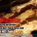 Jasa Anti Rayap kayu jakarta I Hub: 0813-1022-2548