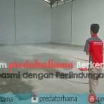Jasa Anti  Rayap Alami I Hub:0813-1022-2548 I Predatorhama