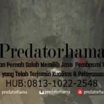 Jasa Pembasmi Rayap Jakarta Utara I Hub :  0813-1022-2548