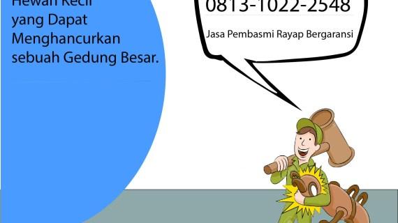 Perusahaan Jasa Anti Rayap Kayu Jakarta Barat