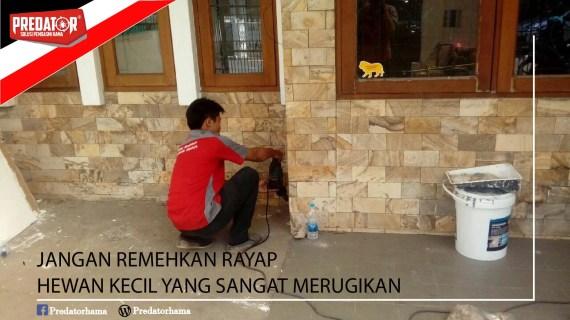 Jasa Basmi Rayap Depok