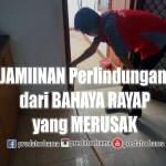 Jasa Tukang Basmi Rayap Tangerang Profesional