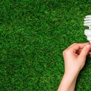 Auditoría Y Gestión Energética Aplicada En La Industria Maderera
