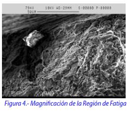 Figura 4.- Magnificación de la Región de la Fatiga