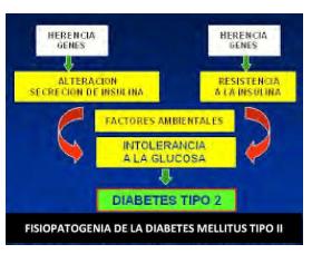Figura 1. Fisiopatogenia de la diabetes mellitus tipo II