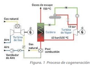 Figura. 1 Proceso de cogeneración