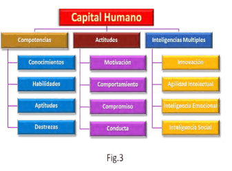 Figura 3. Capital Humano