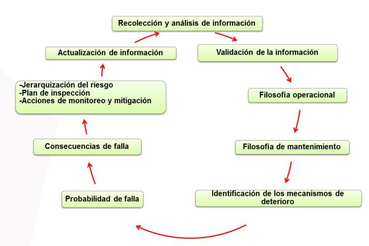Figura 4. Equipo Multidisciplinario