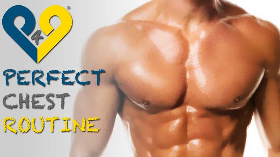 chest-workouts-muscles