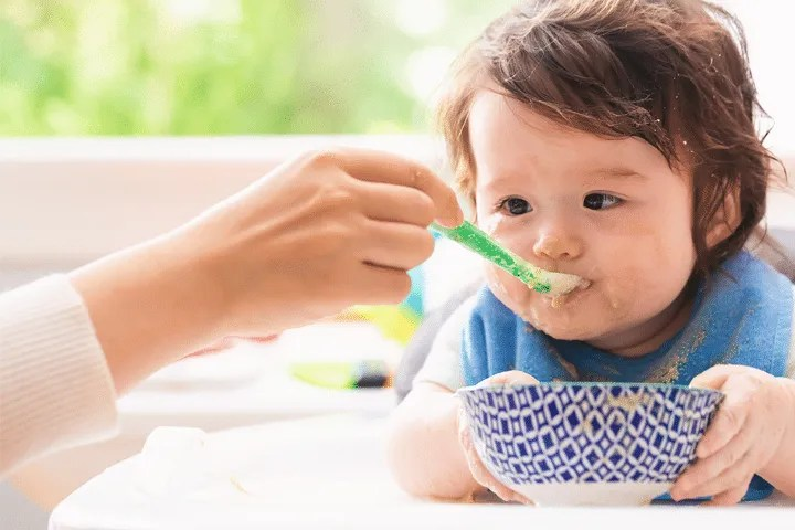 what to feed your 6 to 8 months old