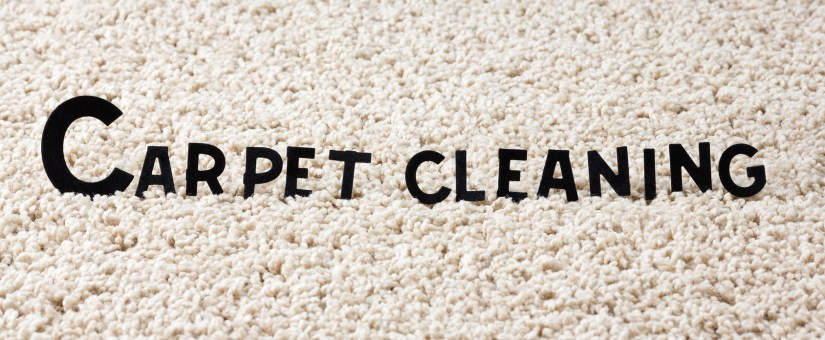 How To Clean Mold From Wool Carpet Carpet Vidalondon
