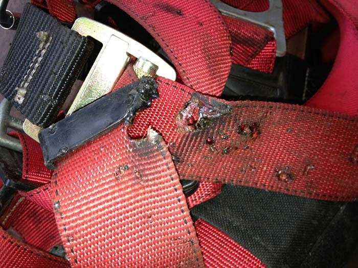 When Does your Harness Expire?