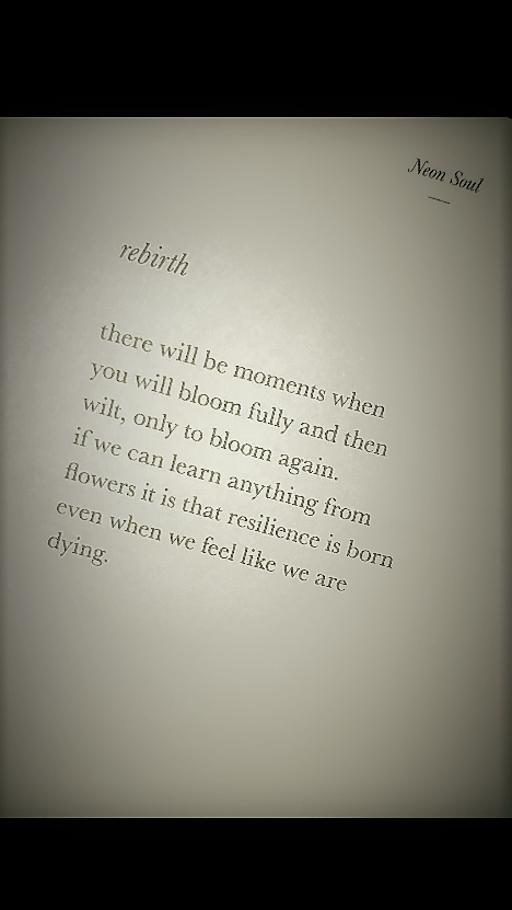 Rebirth By Alex Elle