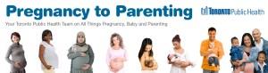 Pregnancy to Parenting, Toronto Public Health