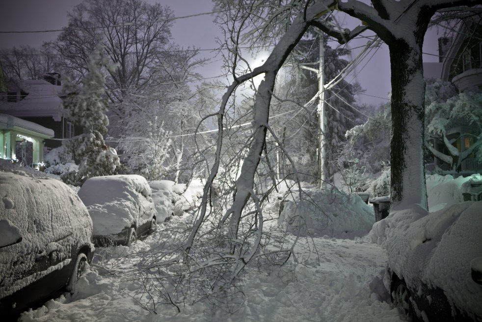 Tree branches collapse on road during winter storm