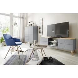 Tenzo Lowboard DOT TV-Bank mit vier Schubladen grau/Eiche