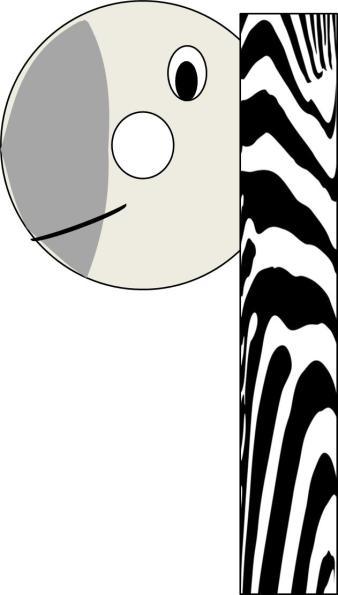 no-7-zebra
