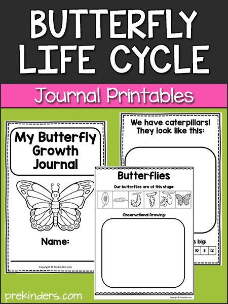 Butterfly Life Cycle Journal Printables