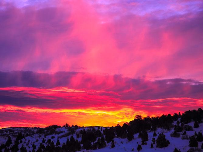 Pink-Winter-Sunset