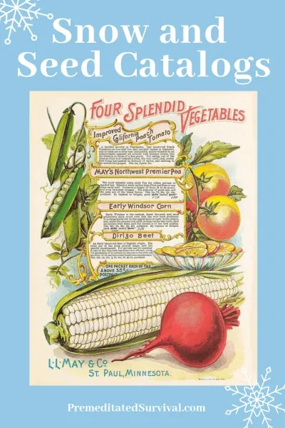 snow and seed catalogs2