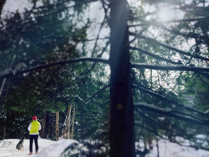 Beaver Brook Trail Hiking