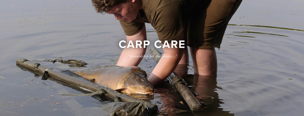 Photo Carp Care Header
