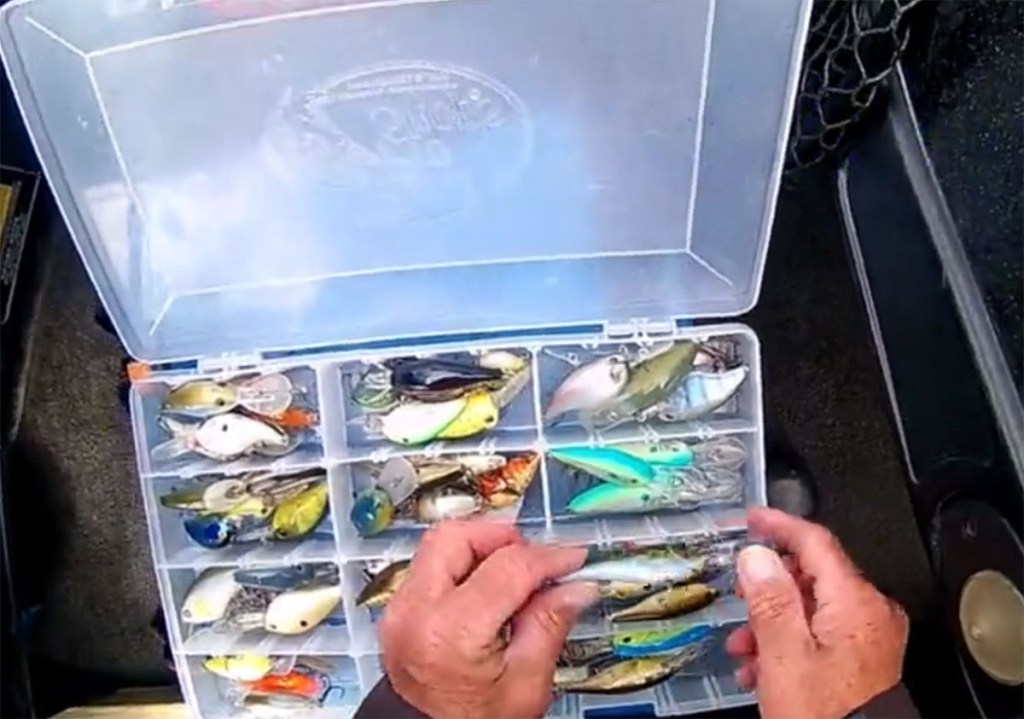 Collection of Bass Lures