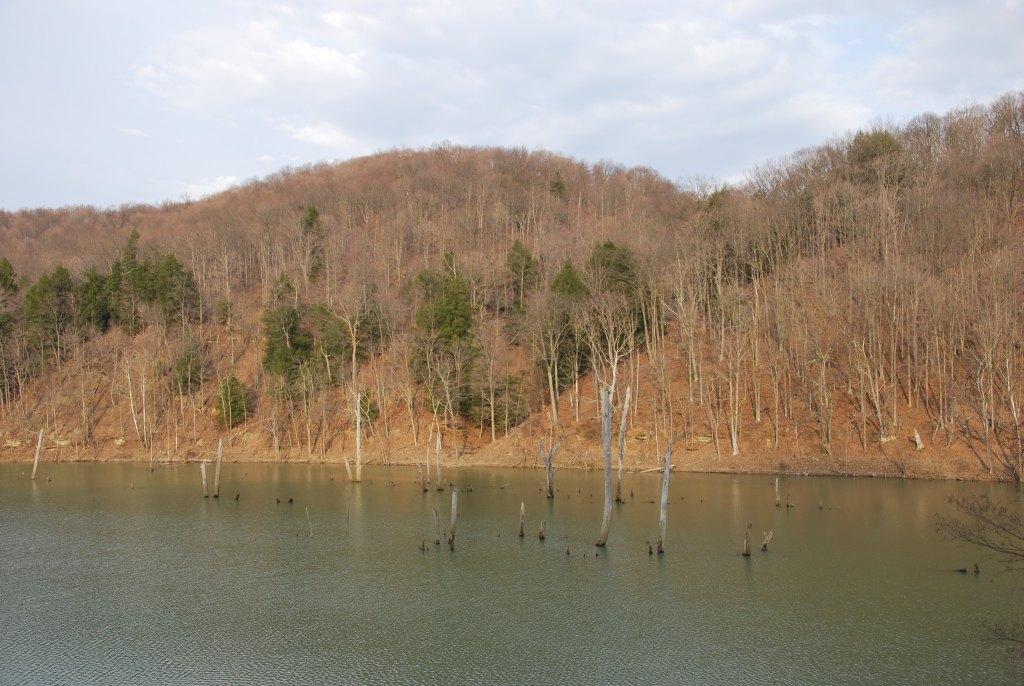 Dunkard Fork Lake