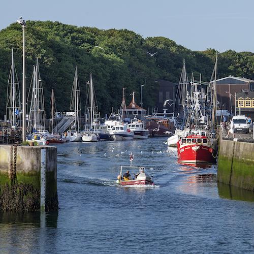 Eyemouth Harbour