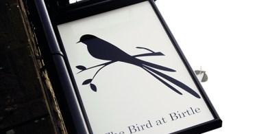 Bird at Birtle