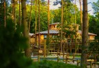 New Treehouses Coming to Center Parcs Woburn Forest