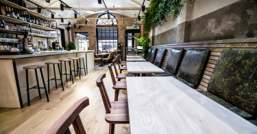 The Growing Influence of Biophilic Interiors