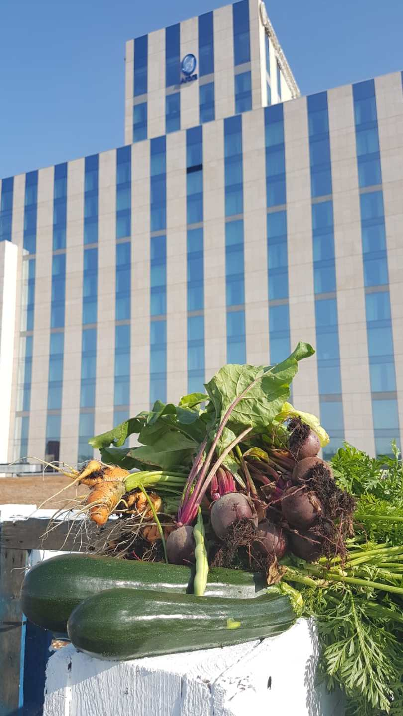 InterContinental London – The O2 Takes Local Food Sourcing to New ...