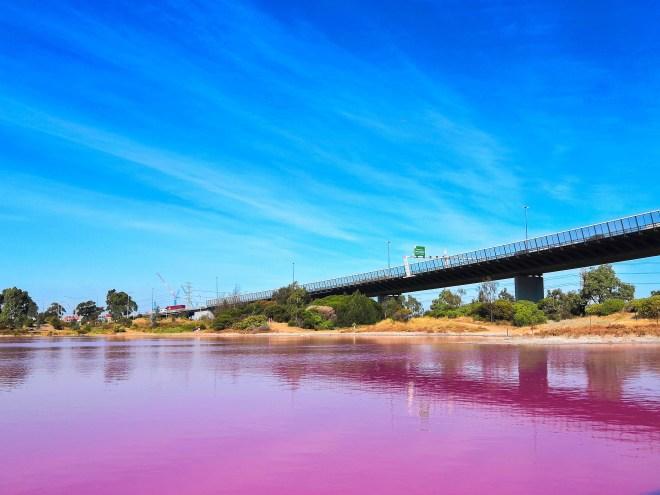 eau violette chignouf cartes postales.jpg