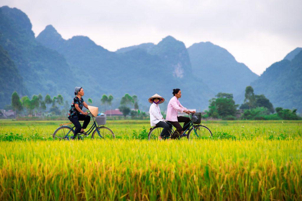 Vietnamese people on bikes