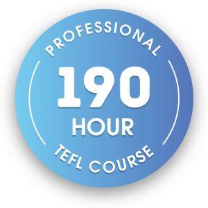 190 hour Professional Online Expert Certification