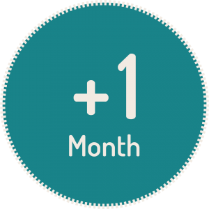 1 month study extension
