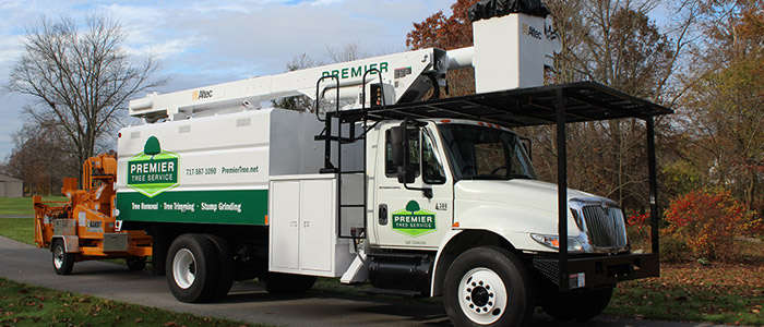 Professional equipment, ready to help you with your tree service needs