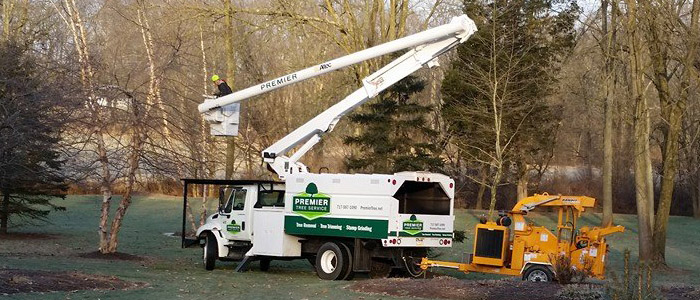 Our tree services rig on the job