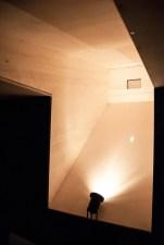 camera oscura_versione serale