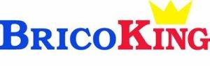 bricoking-logo-ok