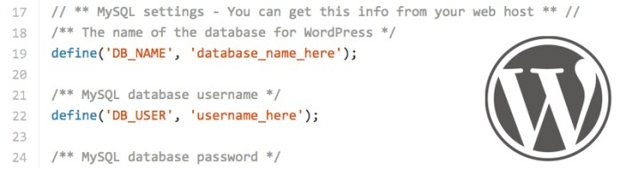 The WordPress config file