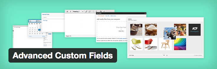 Advanced Custom Fields takes the formatting guesswork out of the dashboard experience.