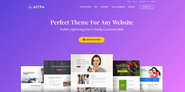 Astra is an extremely lightweight and fast freemium WordPress theme with clean design