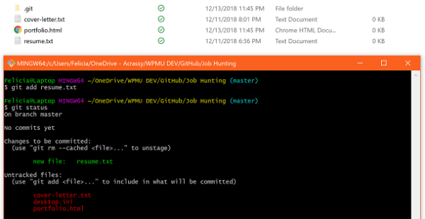 Screenshot of command line using Git Add
